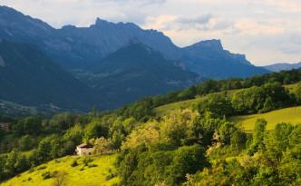 Provence hills