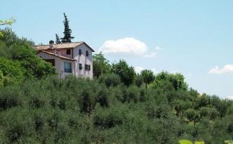 Villa near Lucca