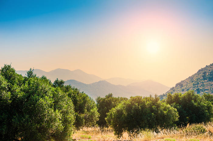 However This Has Changed With The Advent Of Tourists And An Infrastructure Aimed At Attracting A Quieter Type Holidaymaker Crete