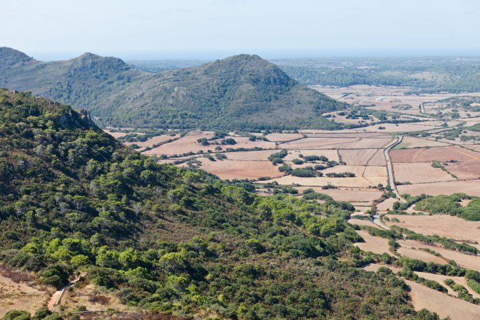 View from Castell de Santa Agueda