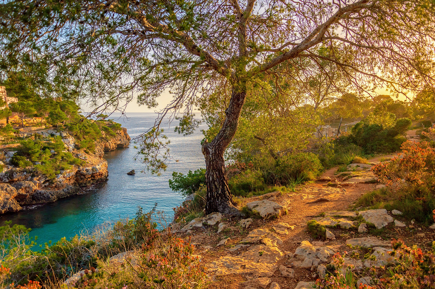 Why Mallorca makes the perfect autumn escape