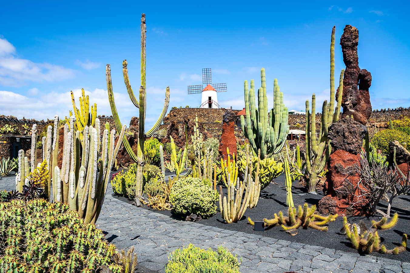 Discovering Guatiza in the northwestern corner of Lanzarote